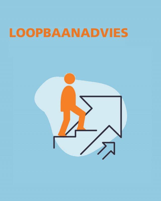 https://powerteam-hrtools.com/content/uploads/2020/10/Loopbaanscan-plaatje-website-640x798.jpg